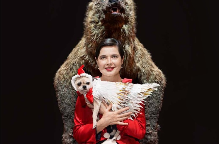 Isabella Rossellini brings Link Link Circus to life