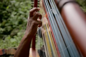 A musician plays the harp